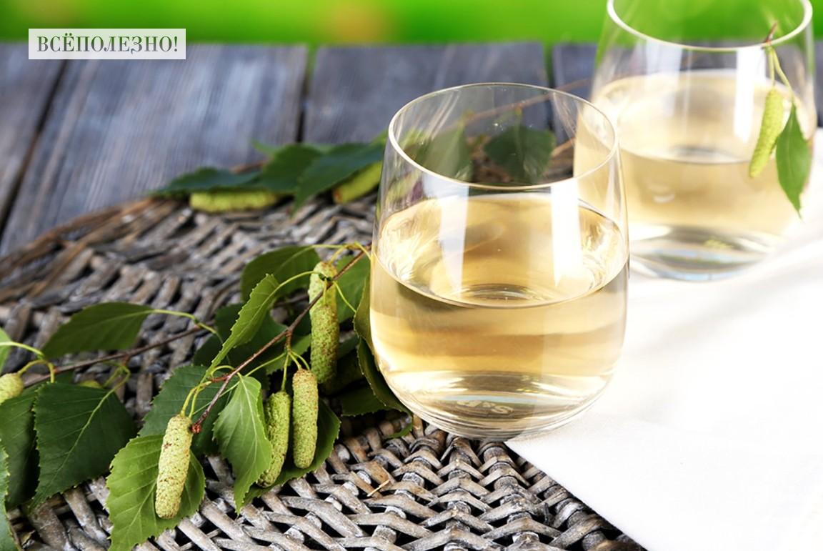 Чем полезен березовый сок, плюсы и минусы употребления