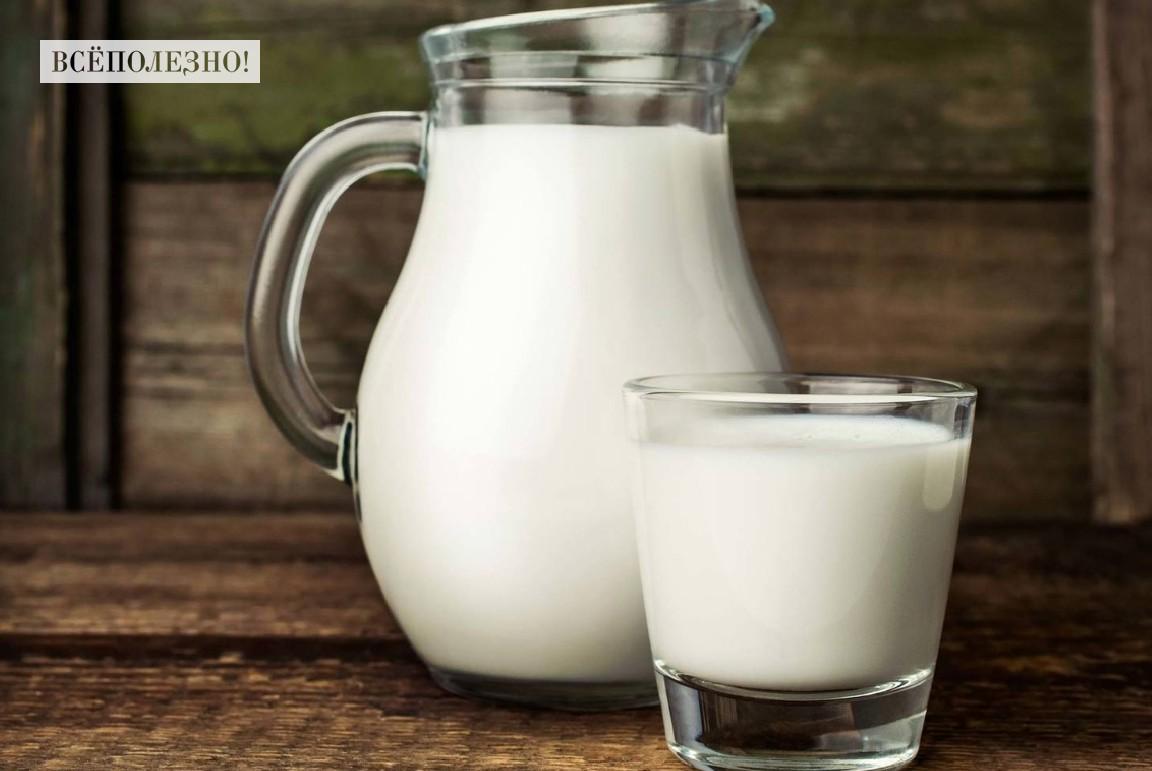 В чем польза козьего молока для организма