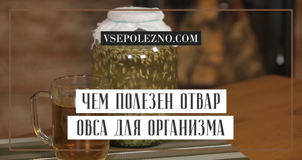 Овёс для очищения организма: как заваривать и пить для чистки в домашних условиях, как правильно приготовить отвар и настой, рецепты