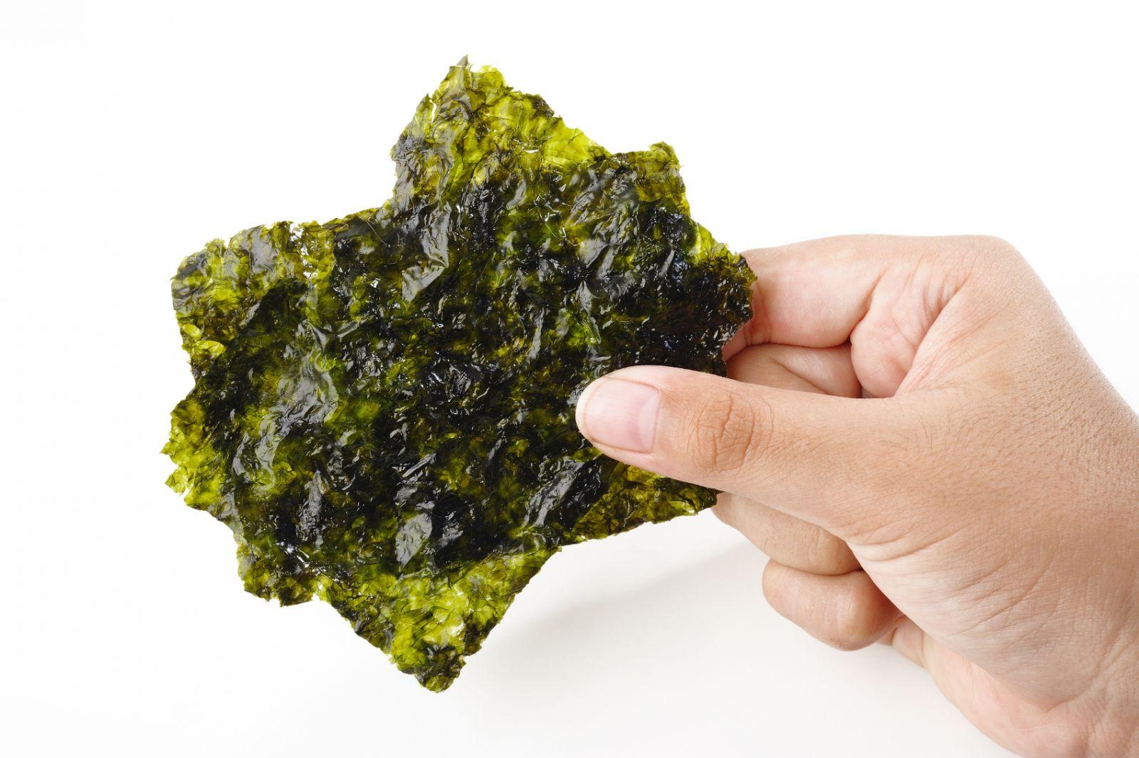 В чем польза морской капусты: свойства для здоровья и красоты | HOCHU.UA